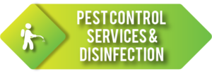 Pest-Control-Services-& Disinfection 1
